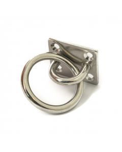 Stainless ring on plate